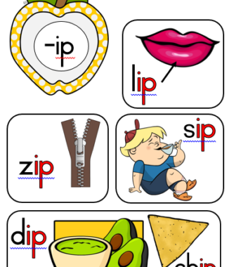 Common consonants, word families and vowels (APPLES THEME)