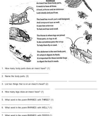 Grade 4 English FAL term test and class test TERM 1 + MEMO (2019) (Marie Steyn)