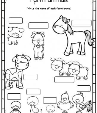-Grade 2 Life skills workbook – Term 2